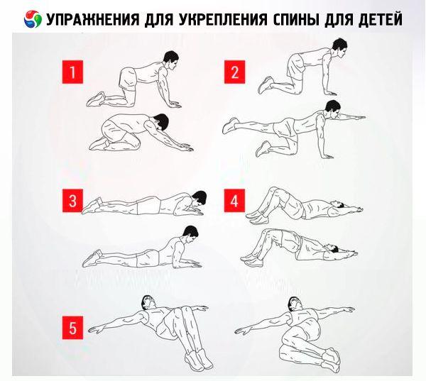 Гимнастика для укрепления мышц спины для детей